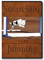 "Susan Salo's, ""Puppy Jumping"""