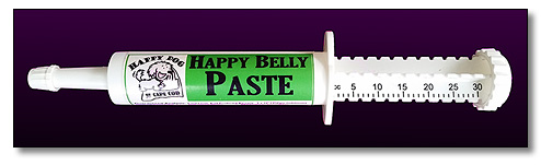 Happy Belly Paste